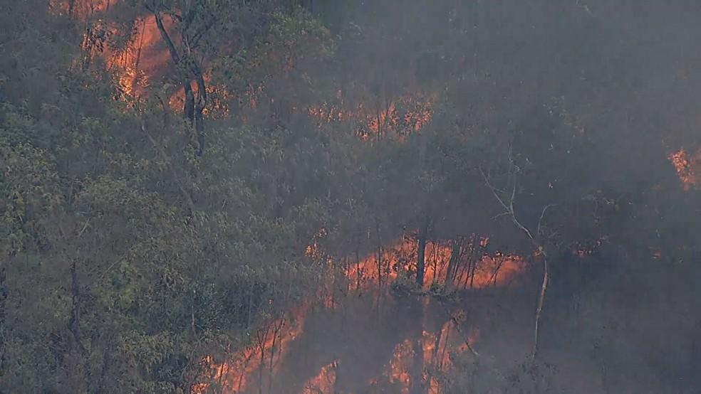 Incêndio atinge área de vegetação da Estação Ecológica de Fechos, em Nova Lima.— Foto: Reprodução TV Globo