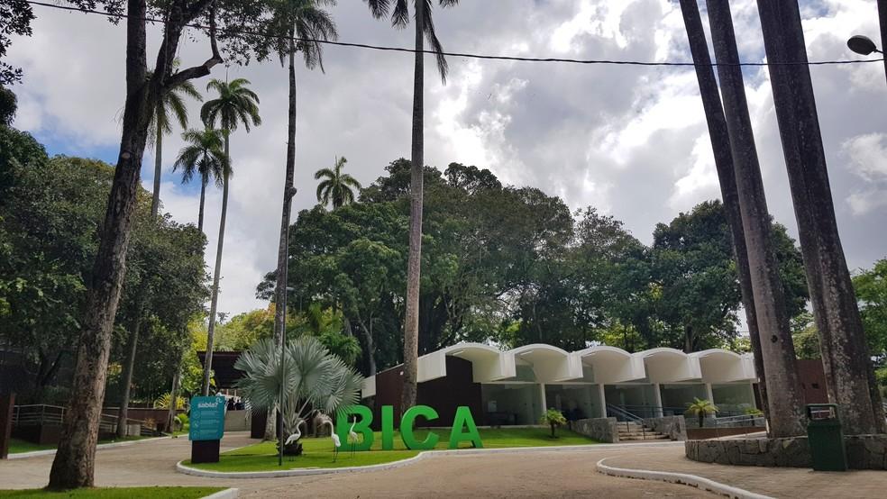 Primeira etapa da reforma da Bica é entregue nesta segunda-feira (5), em João Pessoa — Foto: PMJP/Divulgação