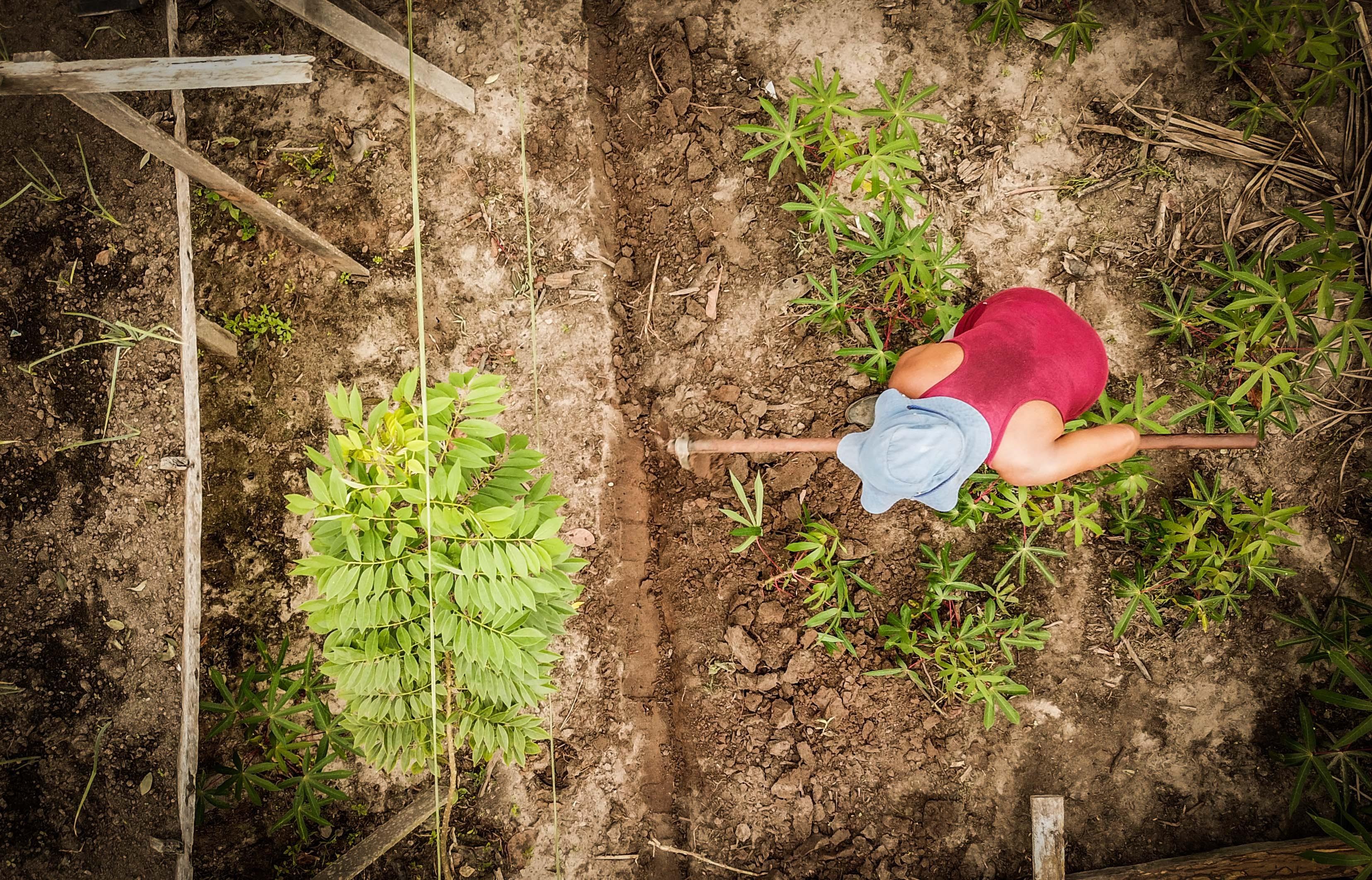 Agricultora trabalhando na lavoura (Foto: Pretaterra/Divulgação)
