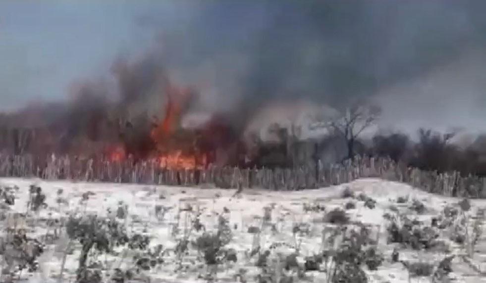 Bombeiros seguem em combate a incêndios na Bahia; queimadas já chegam na divisa do Piauí
