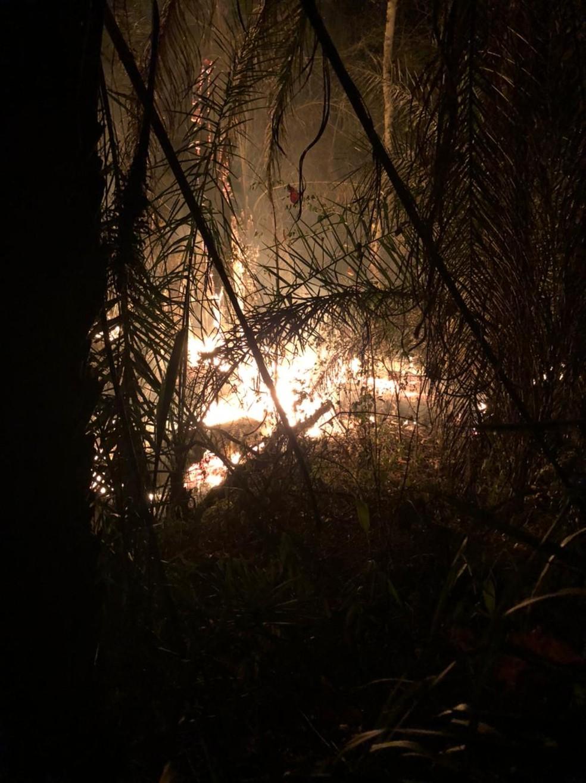 Incêndio é registrado em Poconé (MT) — Foto: Arquivo pessoal