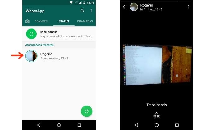 Carregamento do status do WhatsApp do qual será feito o download (Foto: Reprodução/Raquel Freire)