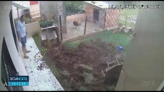 Homem explode quintal ao tentar matar baratas