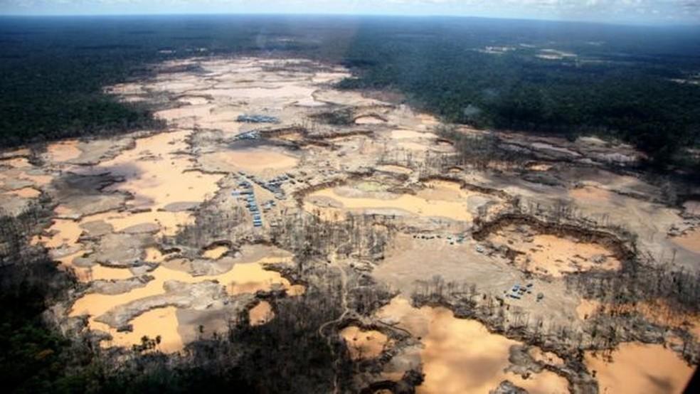 Desmatamento da Amazônia no Peru — Foto: WFU/Acers