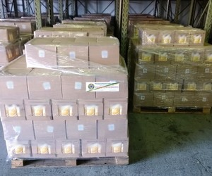 Fiscalização apreende 173 mil litros de  sucos, néctares e água de coco irregulares