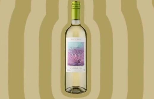 Paine Sauvigno Blanc: sugestão da Wine