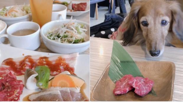 Uma refeição especial para a cliente e seu companheiro (Foto: Reprodução)