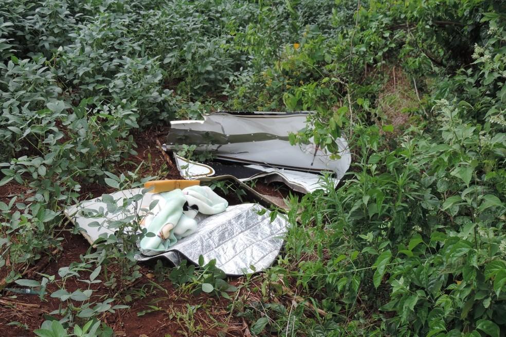 Quatro pessoas da mesma família morreram após a queda da aeronave — Foto: Jorge Tolim/Você e Região