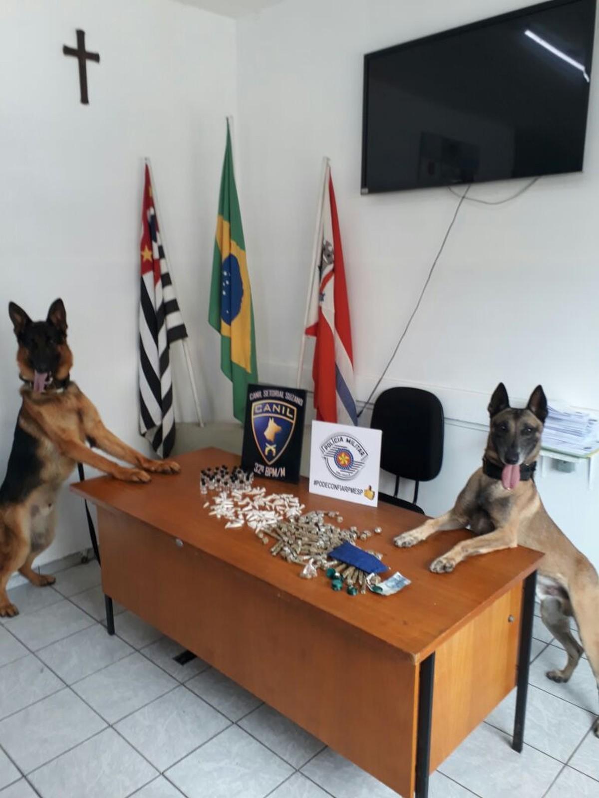 Cães policiais da PM de Suzano localizam mais de meio quilo de drogas no Jardim Colorado