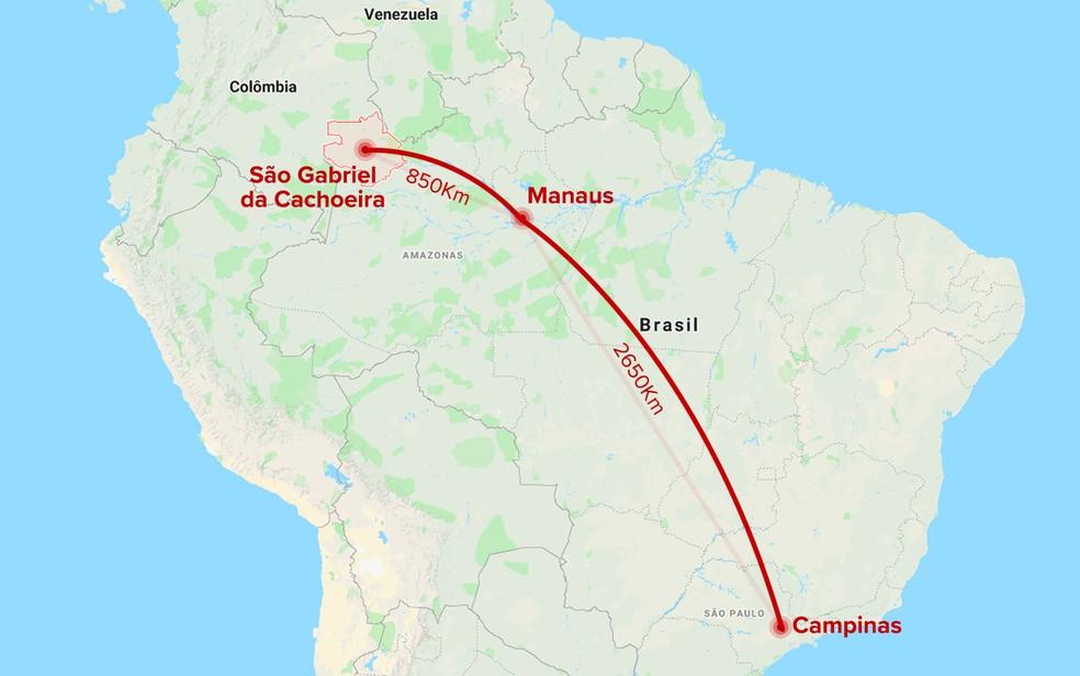 Mapa Campinas / Manaus / São Gabriel da Cachoeira — Foto: Arte / G1