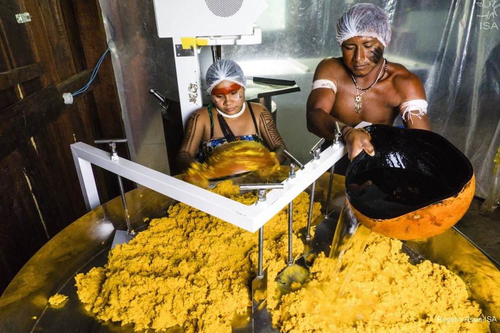 Índios produzem óleo de pequi em terra indígena de MT — Foto: Rogério Assis/ISA