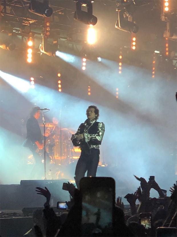 Harry Styles (Foto: Ed. Globo)