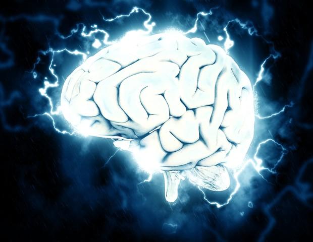 cérebro (Foto: Pixabay)