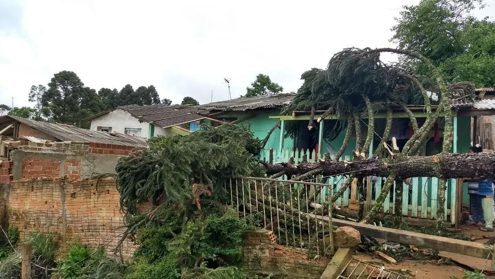 Chuva e vento forte de sábado (21) causaram prejuízos em Fazenda Rio Grande (Foto: Bruno Fávaro/RPC)