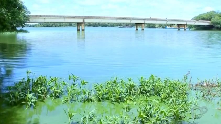 Moradores flagram dezenas de peixes mortos e outros agonizando às margens da prainha de Sabino