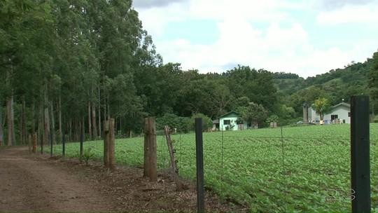 Agricultor é assassinado em casa no sudoeste do estado