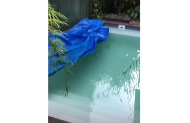 Ele mostrou a piscina escondida pelas plantas e explicou que ela também será retirada do local em que está: 'Aqui não pega sol' (Foto: Reprodução)