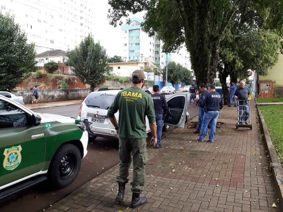 Ibama participou da operação com o Gaeco, em Pato Branco — Foto: Michelli Arenza/RPC