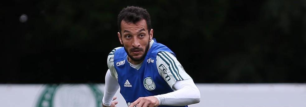 Edu Dracena, zagueiro do Palmeiras (Foto: Cesar Greco/Ag Palmeiras)