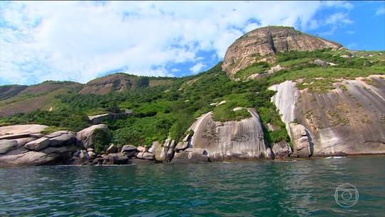 Arquipélago de Alcatrazes é refúgio de vida silvestre em São Paulo