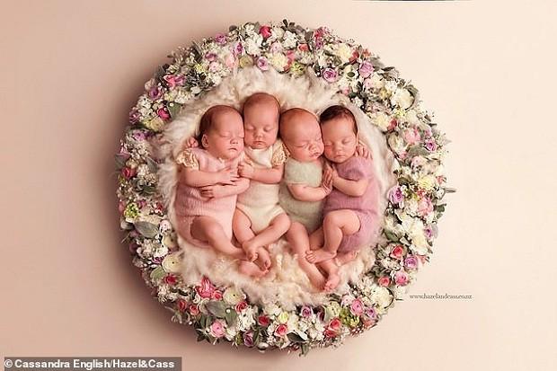 Quadrigêmeos aconchegados em coroa de flores (Foto: Reprodução/Hazel&Cass)