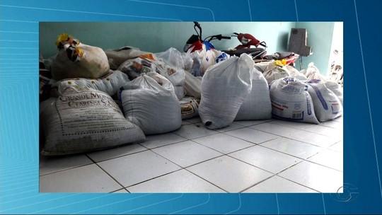 Mais de 200 mil embalagens falsificadas de fumo são apreendidas em Arapiraca, AL
