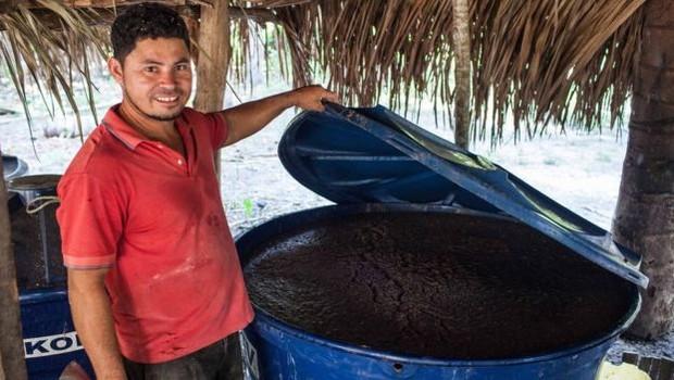 Depois de começar a exibir fungos, os bijus de Leo são amassados e deixados para fermentar em tonéis (Foto: Dubes Sonego Junior/via BBC News Brasil)