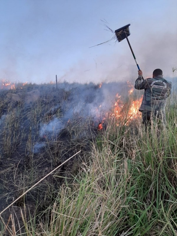Guarda Ambiental combate incêndio em área de vegetação em Arraial do Cabo, no RJ