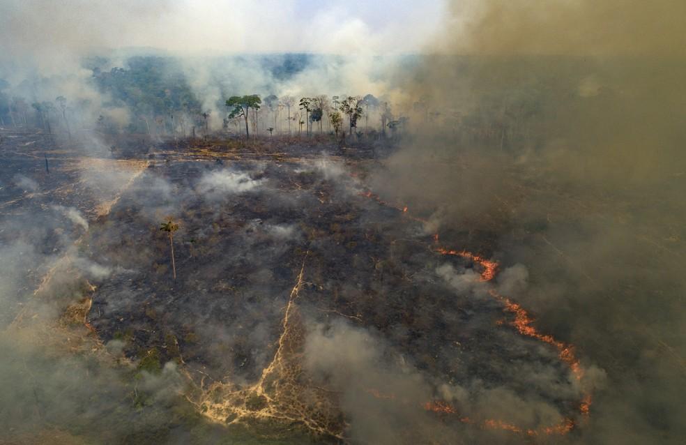 Fogo consome parte da floresta amazônica em Novo Progresso, no Pará, em 23 de agosto de 2020. — Foto: AP Photo/Andre Penner