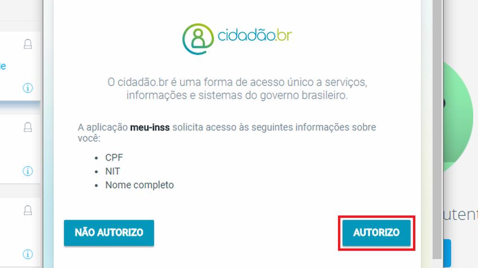 Autorize acesso do cidadão.br ao Meu INSS para usar os serviços do site (Foto: Reprodução/Meu INSS)