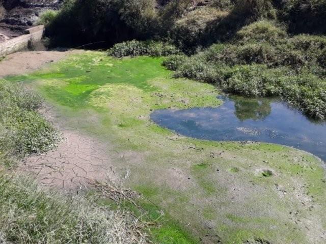 Palmeira volta a ter rodízio no abastecimento de água a partir desta quarta-feira (27)