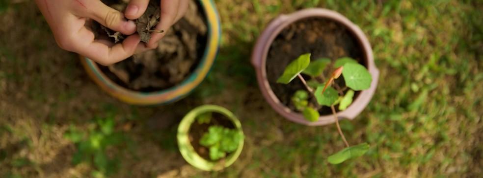 Dia das crianças: contato com a natureza é o melhor presente que os pequenos podem receber hoje — Foto: Divulgação/Tinis