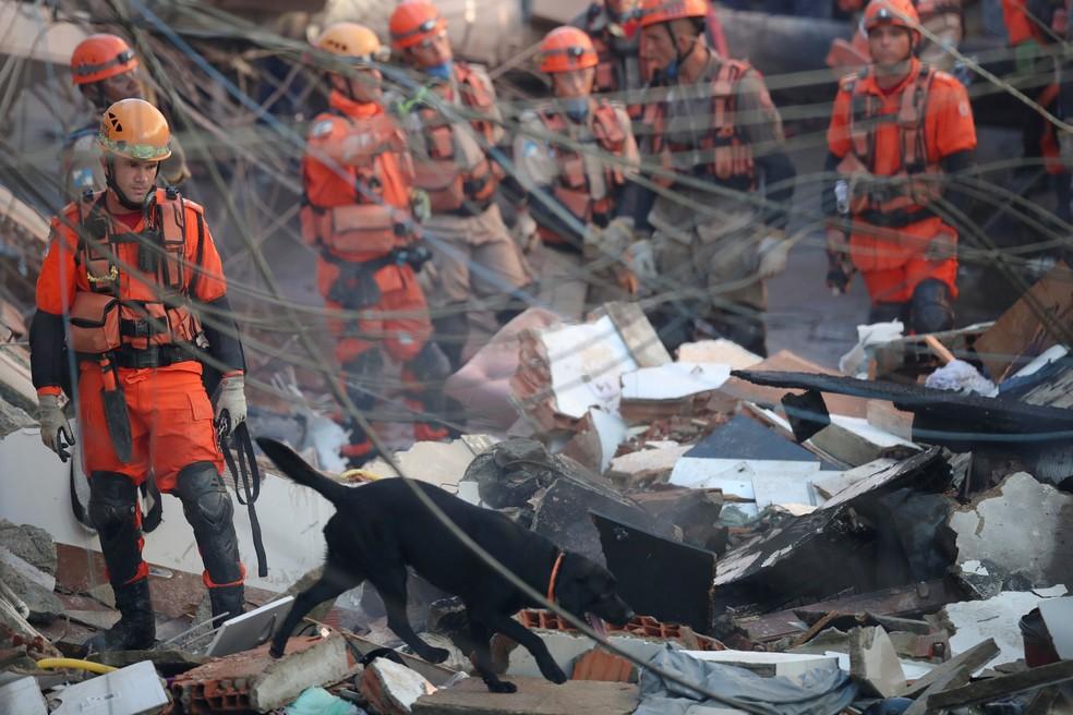 Cães-farejadores participam da busca por feridos após desabamento de prédio em Rio das Pedras, Zona Oeste do RJ — Foto: Ricardo Moraes/Reuters
