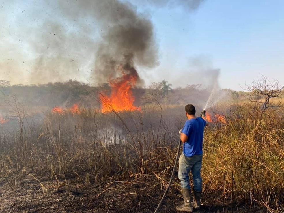 Em Getulina, o fogo atingiu a área de uma fazenda às margens da BR-153  — Foto: Defesa Civil/ Divulgação