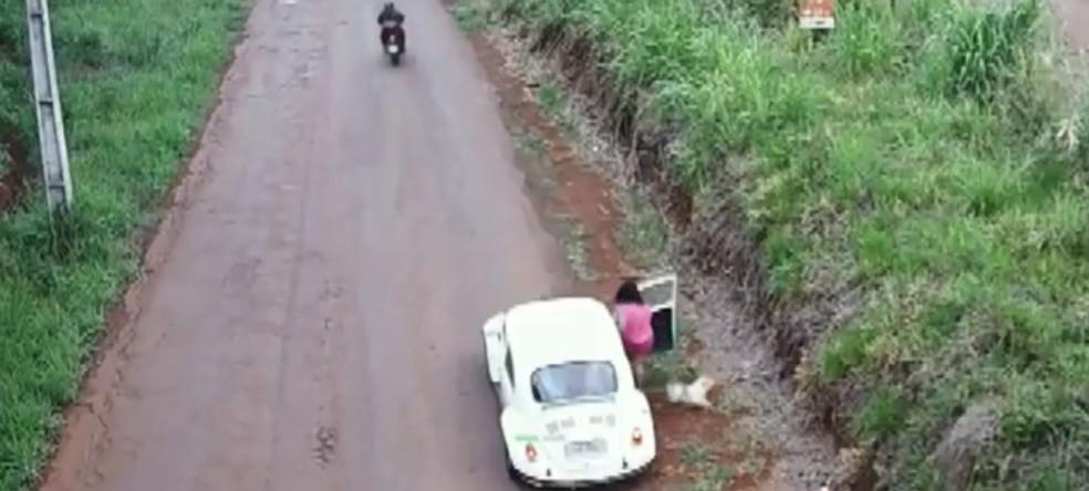 Mulher abandona cachorra às margens da estrada, em Cascavel — Foto: Câmera de monitoramento/Imagem cedida