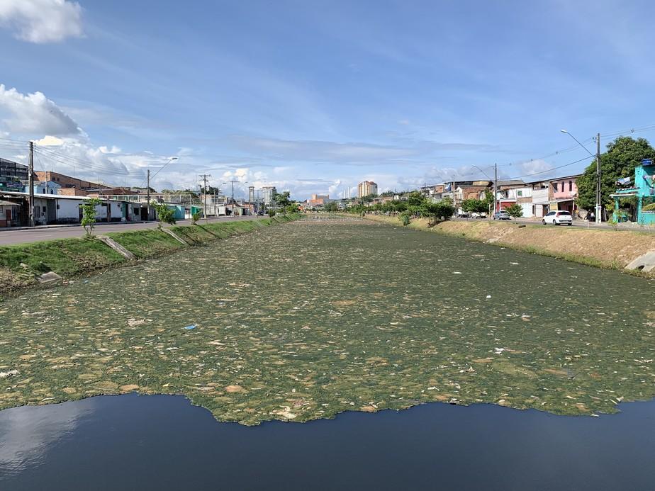 6eb95dd449bff ... Igarapé em Manaus é coberto por 'tapete' de lixo; veja fotos