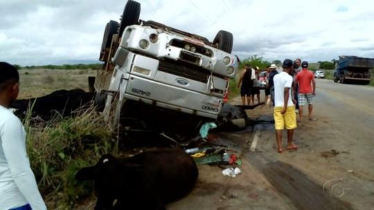 Caminhão bate em rebanho e tomba na rodovia AL-220, em Jaramataia, AL