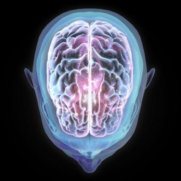 BBC - Mais de 360 cientistas de vários países contribuíram para o estudo de 'uma parte muito importante do cérebro' (Foto: Getty Images via BBC News)