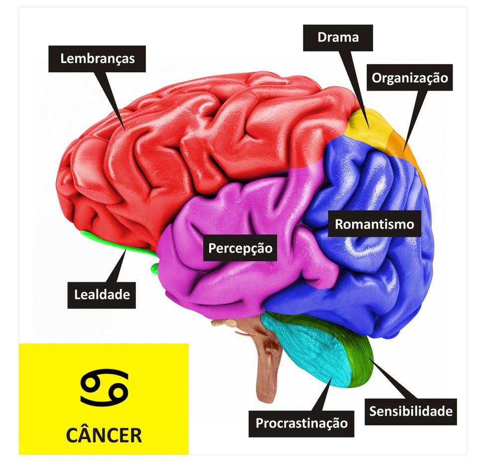 Cérebro de Câncer  (Foto: TV Globo )