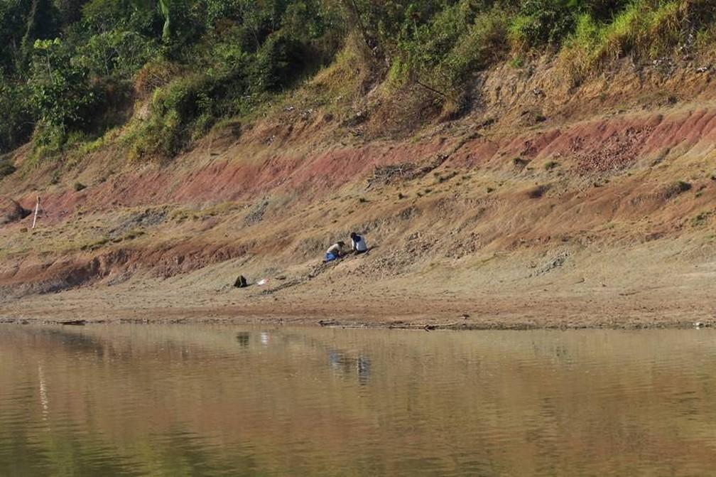 Pesquisadores no sítio paleontológico Talismã, no Rio Purus, em Manuel Urbano (AC) — Foto: Laboratório de Paleontologia de Ribeirão Preto/Divulgação