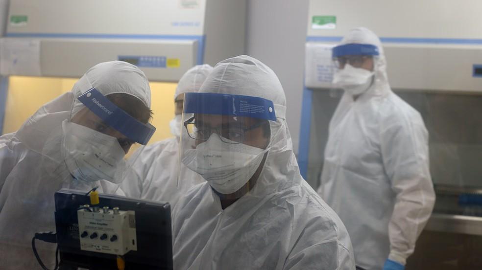 Equipe da Unicamp espera ter o teste para detecção do coronavírus em Campinas nesta quarta-feira — Foto: Liana Coll/Unicamp