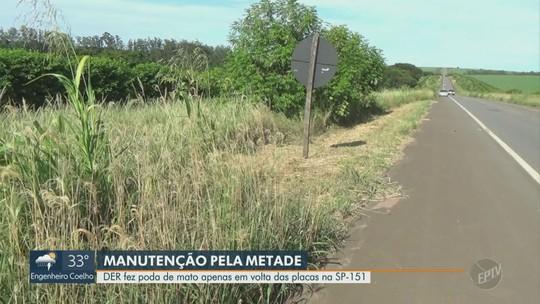 Após reclamação de mato alto, poda é feita apenas contornando placas na SP-151 em Piracicaba