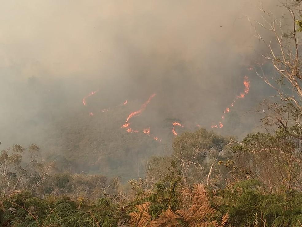 Incêndio mobiliza bombeiros na Serra da Bocaina em SP. — Foto: Cleusa Colaço / Arquivo pessoal