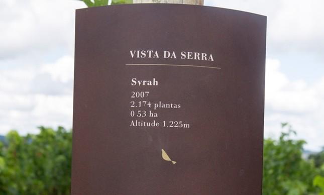 yrah plantada a quase 1,2 mil metros de altitude: vinhos mais complexos da Guaspari