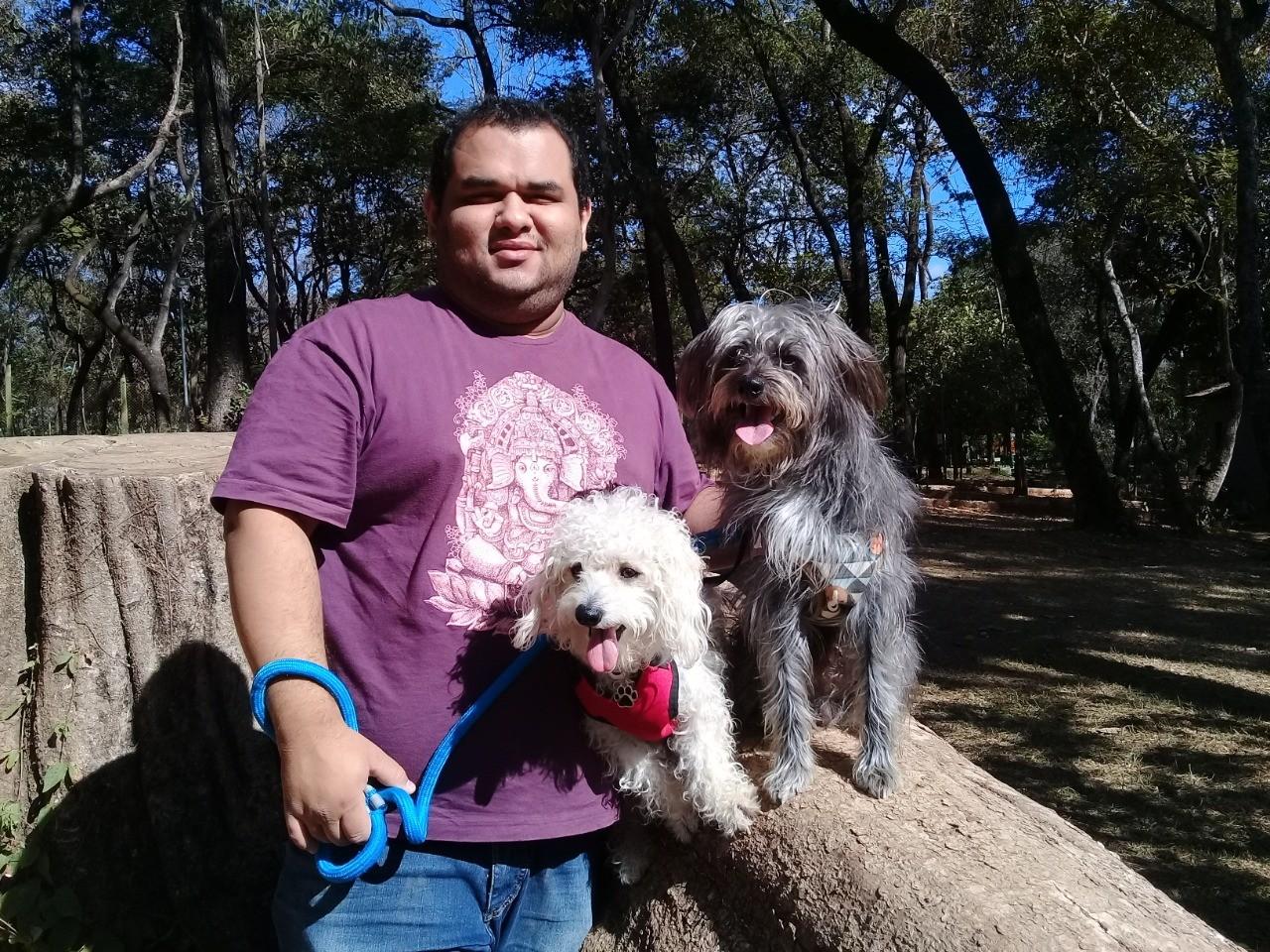 É o Bicho: Veja quais vacinas devem ser aplicadas em cães e gatos - Notícias - Plantão Diário
