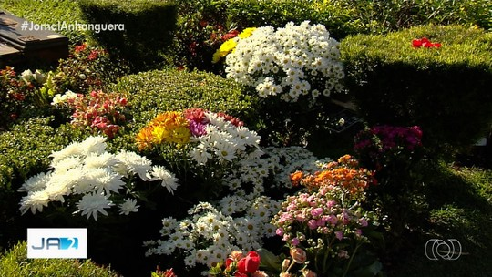 Fãs deixaram flores e mensagens no túmulo de Cristiano Araújo, em Goiânia