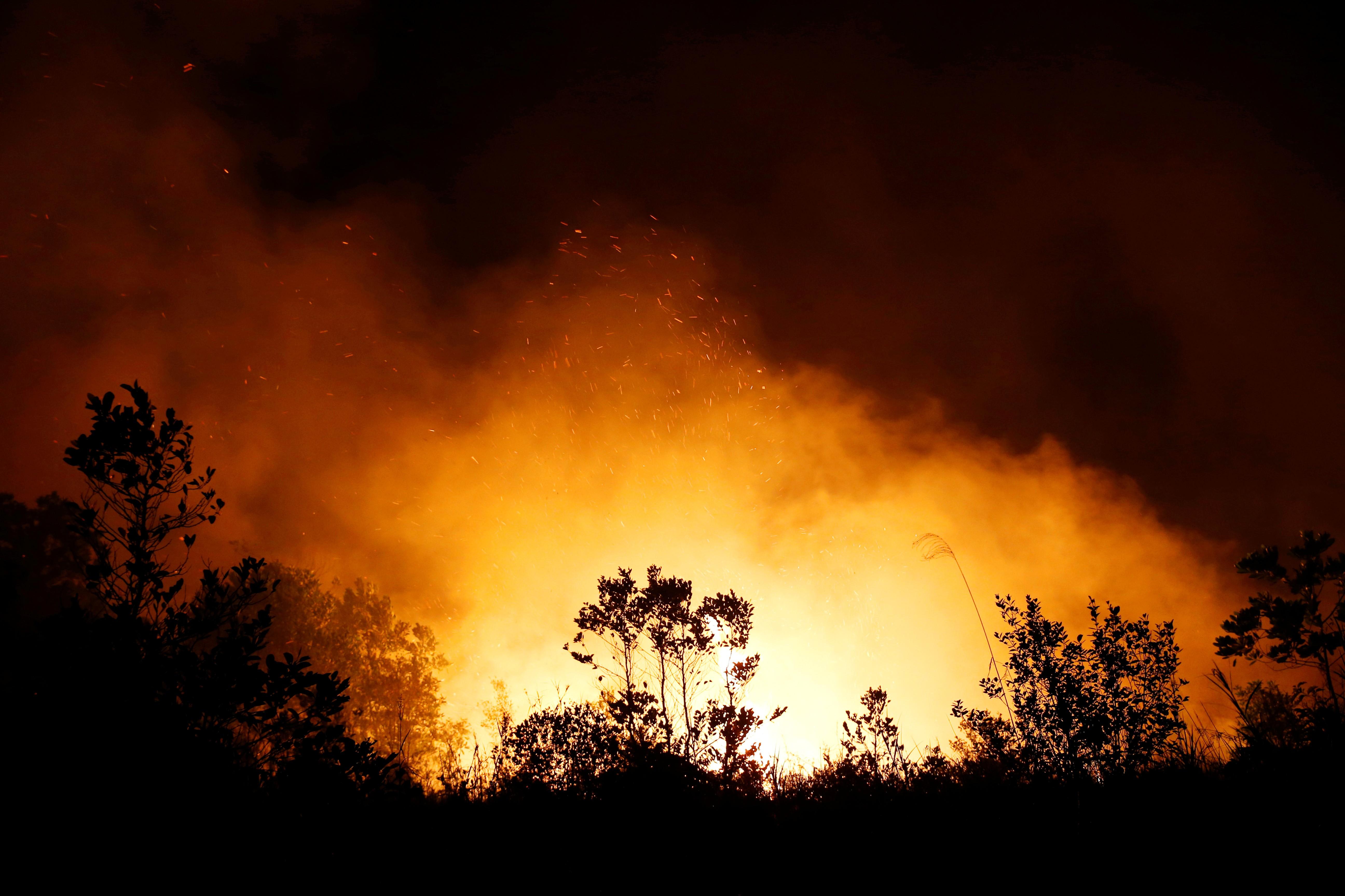 Na Indonésia, 185 são presos por queimadas intencionais - Notícias - Plantão Diário