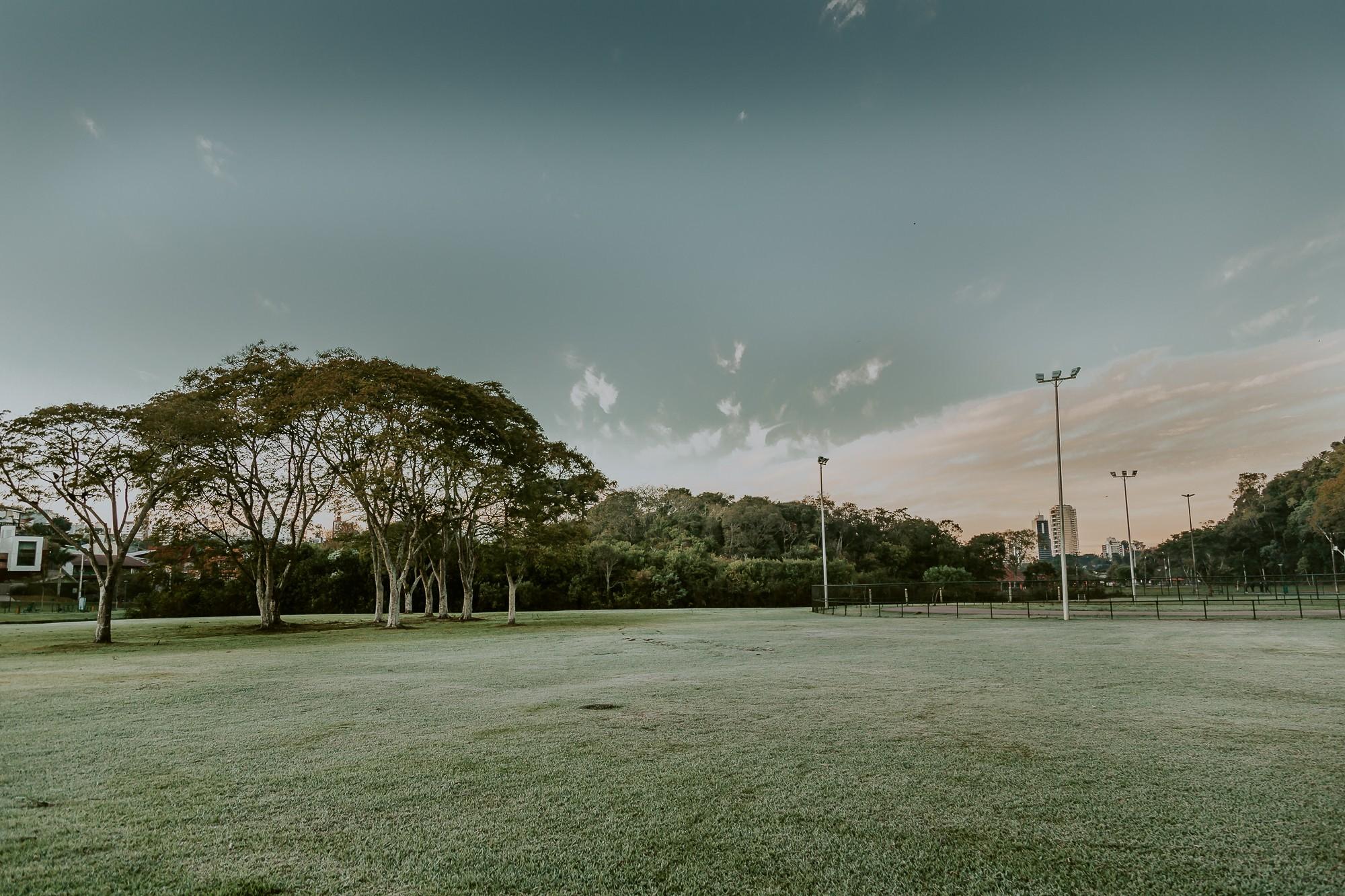 Curitiba registra 3,7ºC e tem o dia mais frio do ano; veja FOTOS da geada