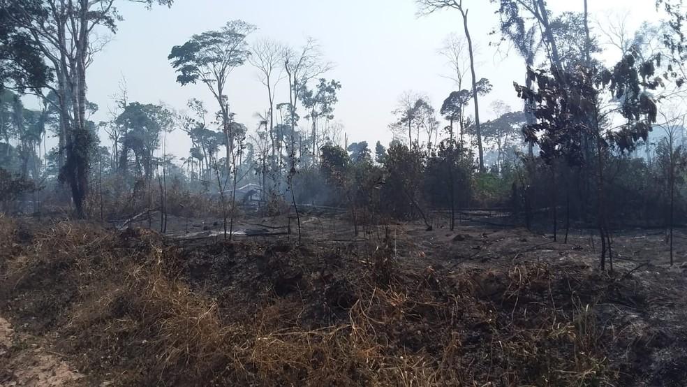 Reserva Ambiental Margarida Alves, após incêndio em Nova União (RO) — Foto: Reprodução/Redes Sociais