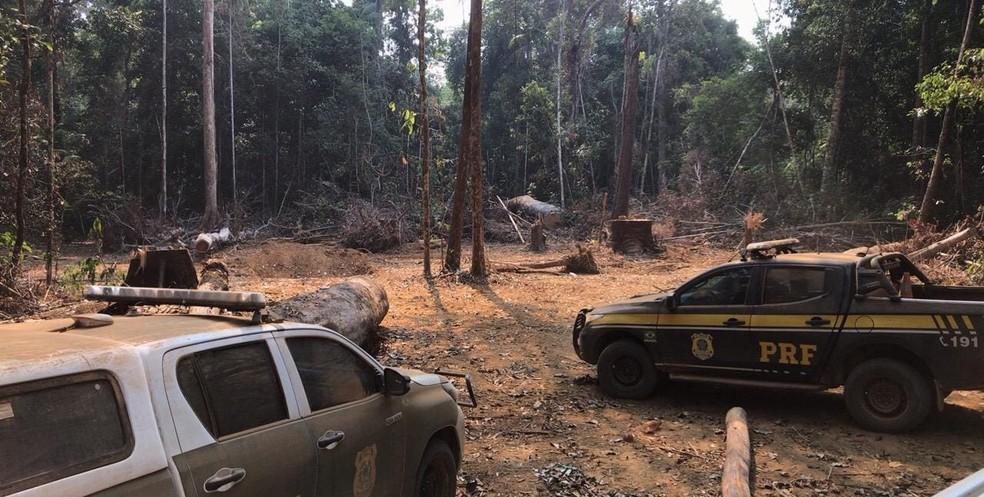 Operação foi feita por vários dias reserva indígena em Porto Velho — Foto: PRF/Divulgação